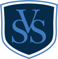 Velez Security Solutions, LLC