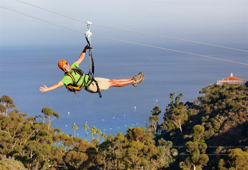 Zip Line on Catalina