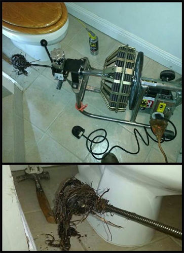Gallery Image v_max_plumbing_2.png