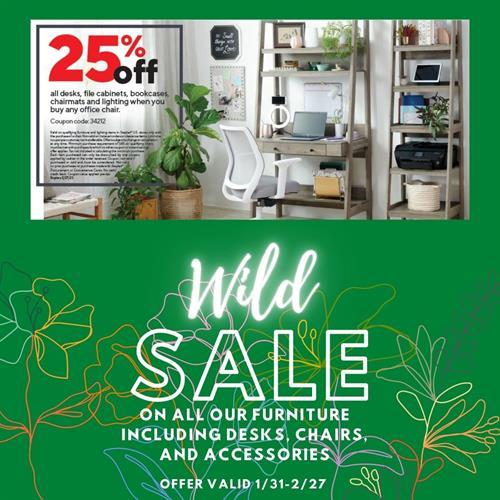 Furniture Promotion