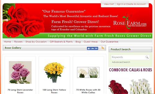 Flowers Website ecommerce