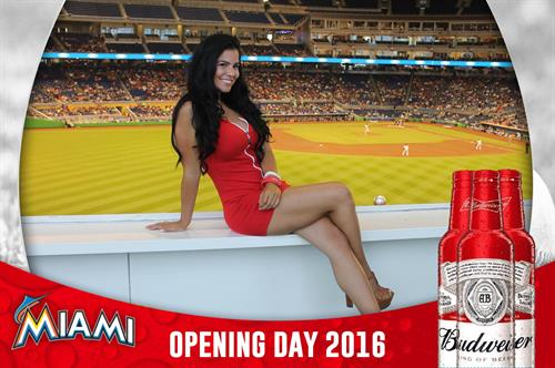 Budweiser @ Miami Marlins