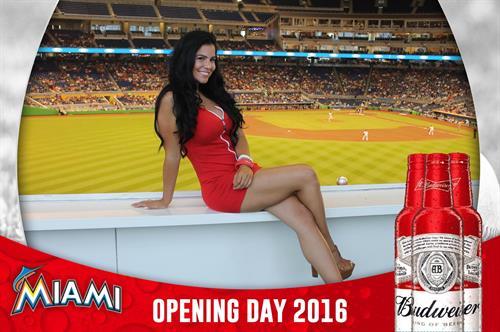 Budweiser @ Miami Marlins