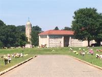 Stately Mausoleum Buildings