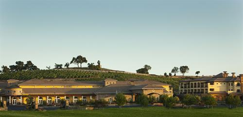 The Meritage Resort and Spa - Exterior with Hillside Vineyards