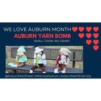 Auburn Yarn Bomb Installation