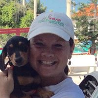 Anderson & Boback hosts spay and neuter clinic in Telchac Puerto, Mexico