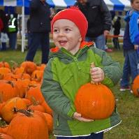 Oak Bank's Great Pumpkin Give Away