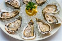Gallery Image oyster-food-ice.jpg