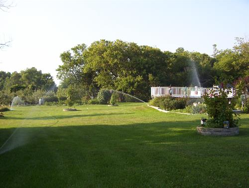 Sprinkler Systems - Irrigation
