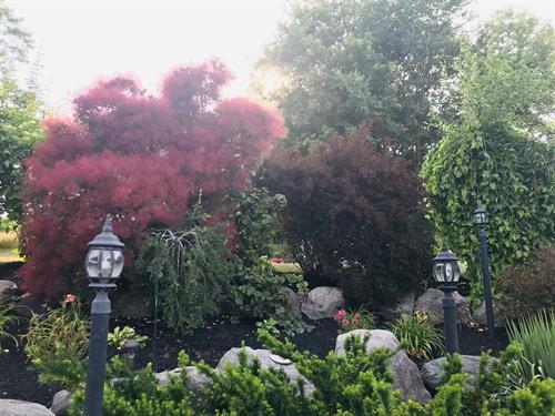 Come enjoy the beautiful gardens