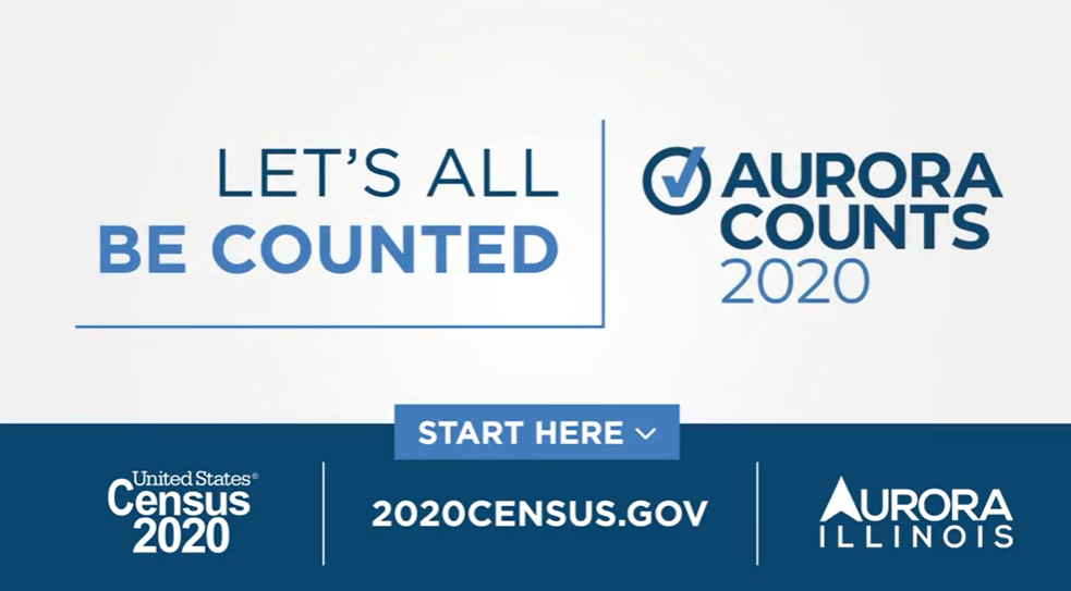 Image for The Importance of the Census