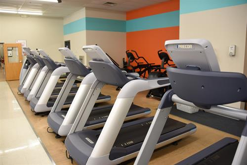 Lots of treadmills and other cardio equipment is available!