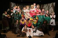 Into the Woods Jr.cast