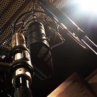 Royer ribbon microphone and condenser Neumann microphone in the vocal booth
