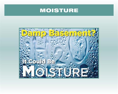 Damp Basement, Could be Moisture