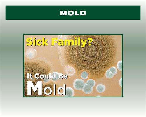 Sick Family, it could be Mold