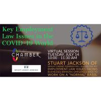 Key Employment Law Issues in the COVID-19 World