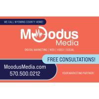 Moodus Media LLC - Falls