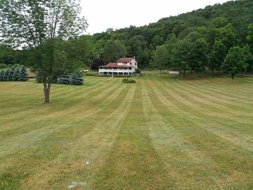 Nothing like the look (and smell) of a freshly cut lawn!