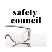 Safety Council Steering Committee