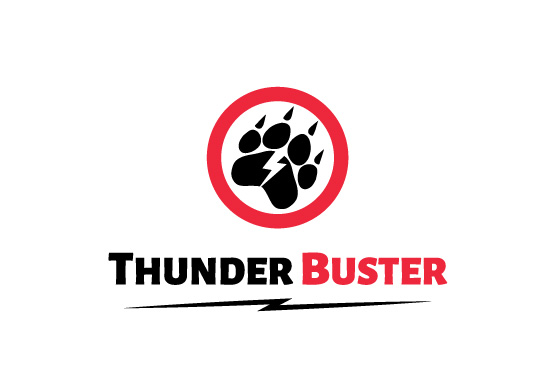 Logo Design for Thunder Buster