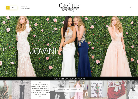 Website Design for Cecile Boutique in Newark, DE