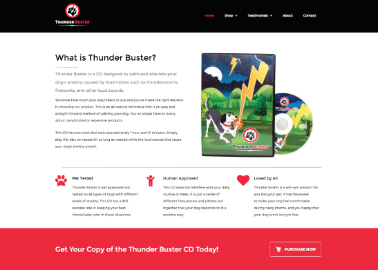 Website Design for Thunder Buster