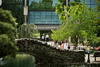 Salus University - Elkins Park PA