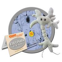 Gallery Image Brain_Cell_Giant_Microbe.jpg