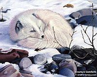 Fine art: Creature Comforts - acrylics