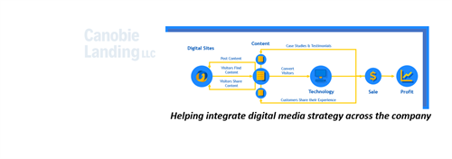 Helping integrate digital media strategy across the company
