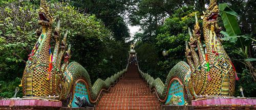 Thailand Trips