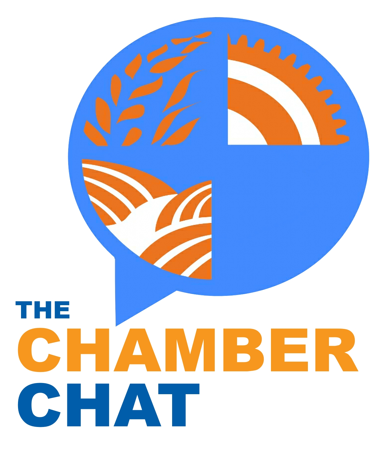 Chamber Chat Five Critical Questions To Ask About Your Business