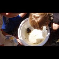 Knee High Naturalist Program at Letchworth