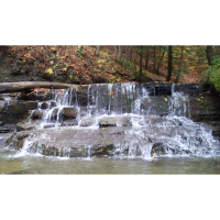 Nearby Excursion to Vacation Creek