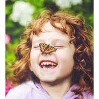 Home Ecologist - Butterflies