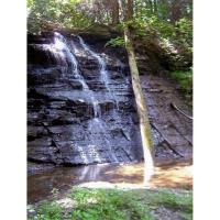 A walk on the wild side-Dishmill Creek Area, Letchworth State Park