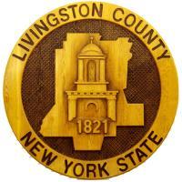 Livingston County Treasurer