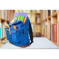 Businesses For Backpacks