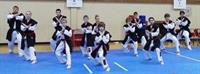 Henrich Black Belt demo Team