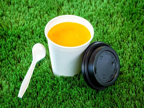 Blended Curried Carrot Soup