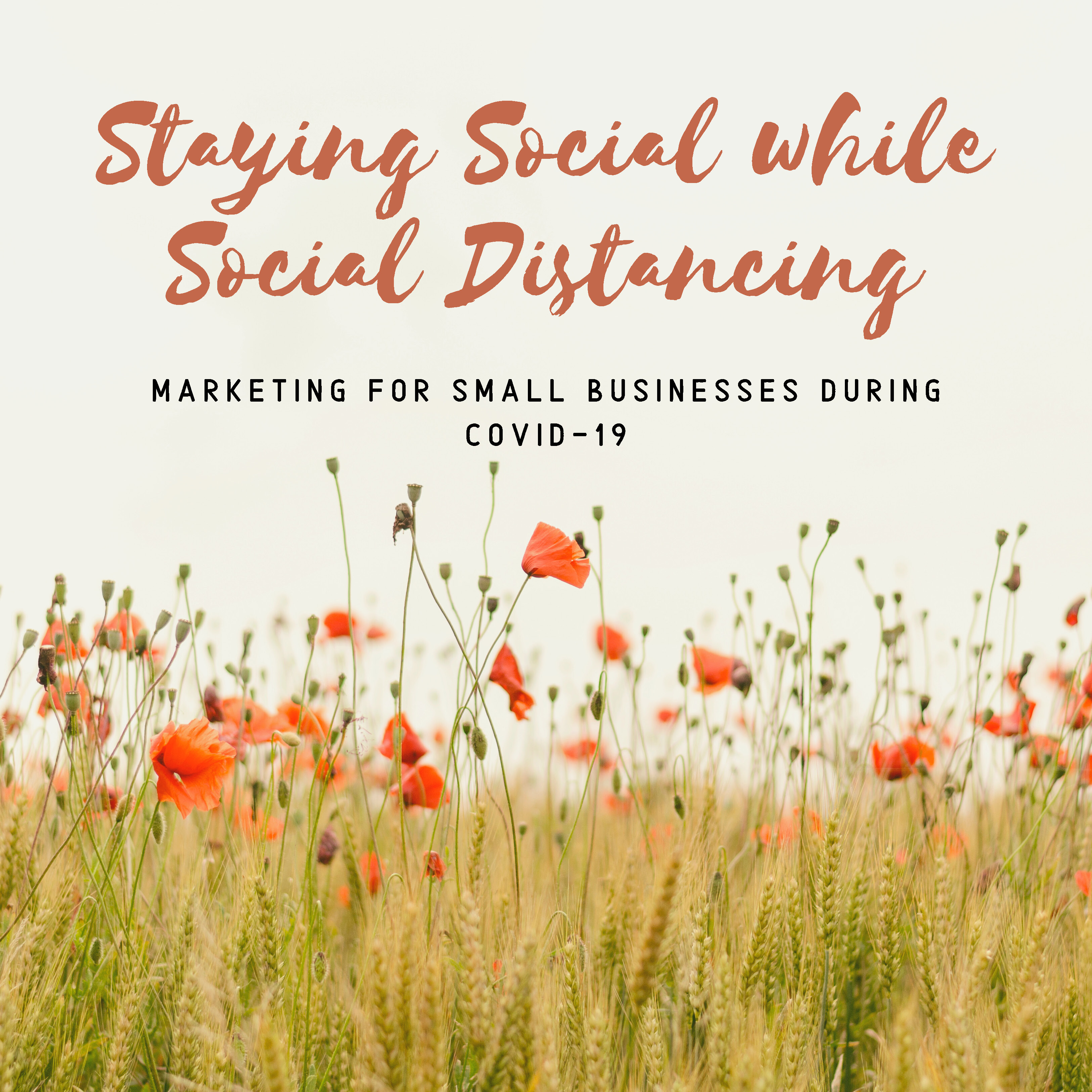 Staying Social While Social Distancing