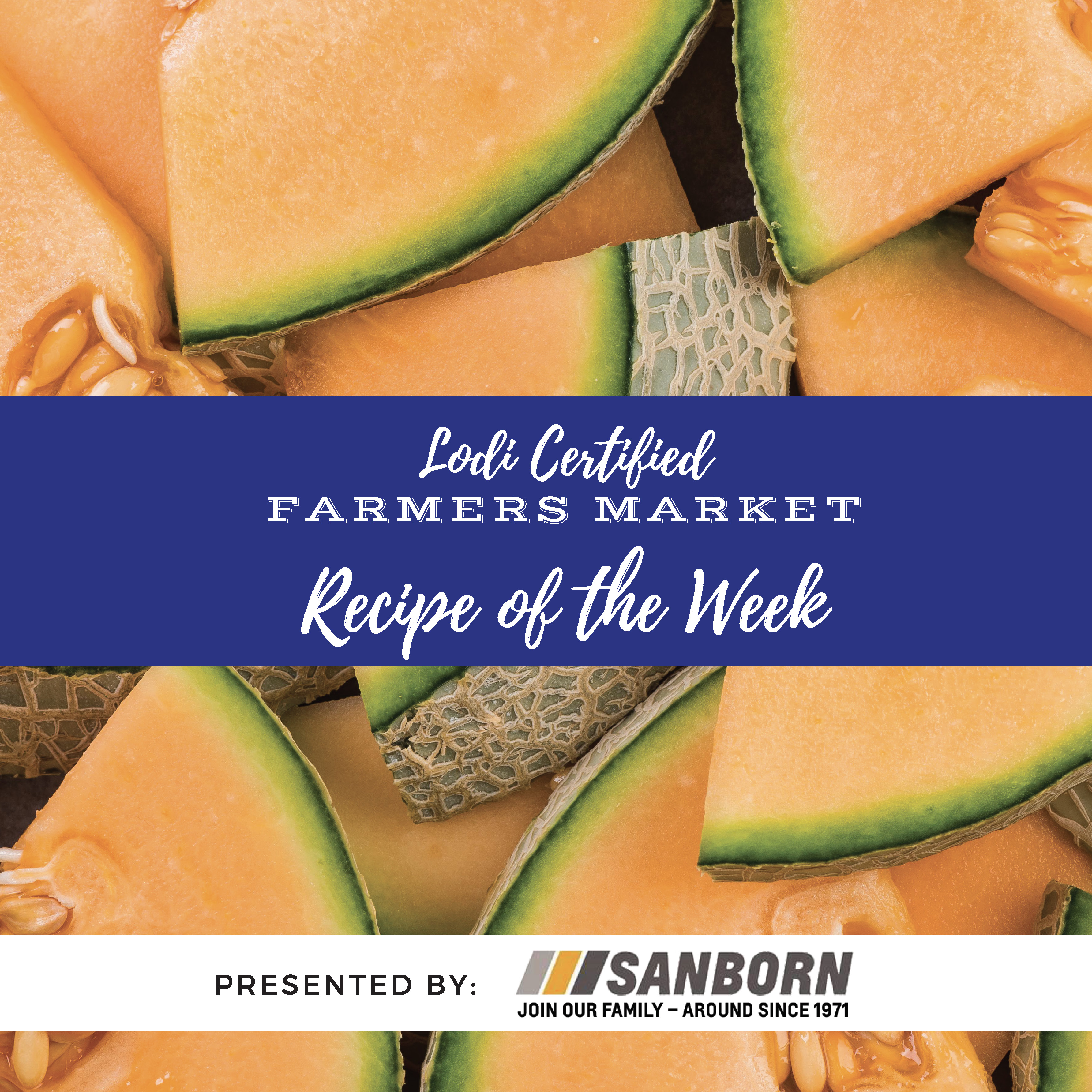 Recipe of the Week- Cantaloupe & Prosciutto Skewers