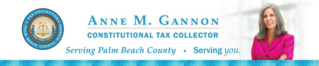 Anne M. Gannon, Constitutional Tax Collector Serving Palm Beach County