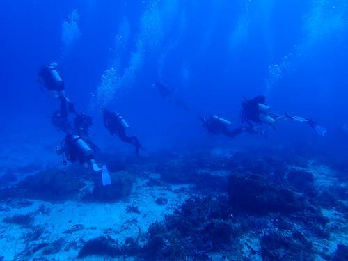 Dive trip to Cozumel July 2018
