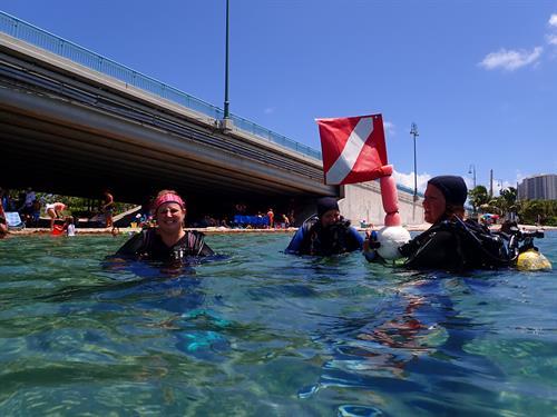 Diving at the Blue Heron Bridge