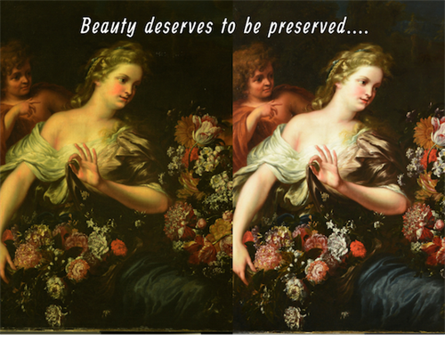 Beauty deserves to be preserved...