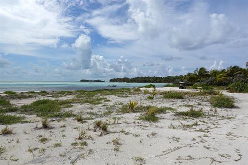 Gallery Image Expansive_Beach_Cat_Cay.jpg