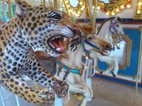 ...and the Wildlife Carousel